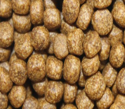 Fish feed produced by extruder